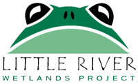 Little River Wetlands Project